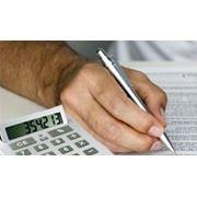 Заполнение налоговых деклараций для организаций и ИП