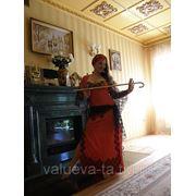 Пошив костюмов для восточных танцев фото