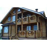 Дома из оцилиндрованного бревна кедра фото
