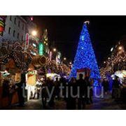 Зимние каникулы в Праге + Дрезден фото