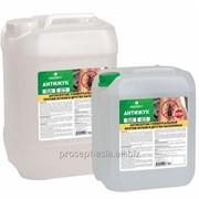 024-10 Prosept: PROSEPT АНТИЖУК - антисептик универсальный против жуков и других насекомых фото