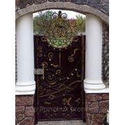 Кованные двери, калитка фото
