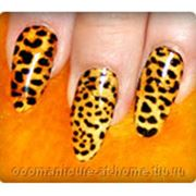 Леопардовый фото