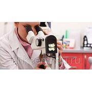 Гинеколог (ВИДЕОКОЛЬПОСКОПИЯ) фото