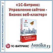«1С-Битрикс: Управление сайтом - Бизнес веб-кластер» фото