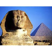 Египет / Таба Вылет - 30.09.13, на 11 дней, питание - всё включено. фото