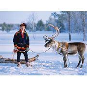 Финляндия ВЫЛЕТ Днепропетровск 29.12 и 05.01 фото