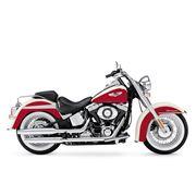 Harley-Davidson® Softail® Deluxe FLSTN 2013 фото
