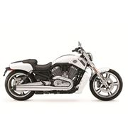 Harley-Davidson® V-Rod Muscle® VRSCF 2013 фото