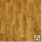 Линолеум PARADOХ 31класс Бытовой (2/2,5/3/3,5/4м) фото