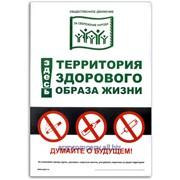 Наклейка Территория здорового образа жизни 9862 фото