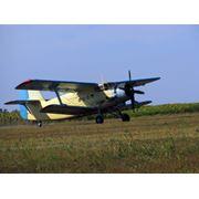 Продам Самолет АН-2 фото