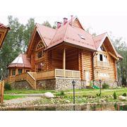 Дома из сибирского кедра фото