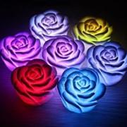 Неоновая роза фото