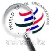ВТО: вопросы участия Республики Казахстан фото