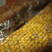 Сотовый мед с пергой фото