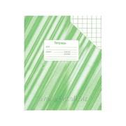 Тетрадь ученическая 24 листов, клетка фото