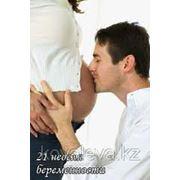 Психологическое сопровождение беременности (индивидуально) фото