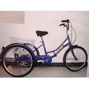 Велосипеды Pigeon TRC002 фото