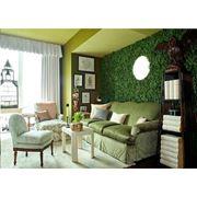 Вертикальное озеленение интерьера фото