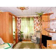 1 комнатная квартира г. Сольцы ДОС 195 фото