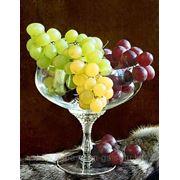 Виноградное обертывание фото