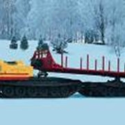 Двухзвенный гусеничный транспортер ДТ-30Л фото