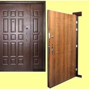 Дверь металлическая модель МТ 10 фото