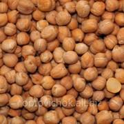 Нут ( крупный 8-10 урожай 2014) 976 фото