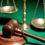 Представительство в судах и органах государственной власти фото