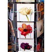 Открытки цветочные фото