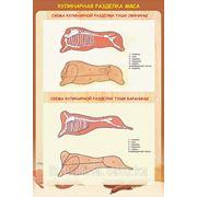 Плакаты по обработке мяса фото