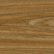 FF-1424 Клён Спаниш (Fine Floor) фото