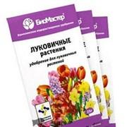 """Подкормка """"БиоМастер"""" 25г для луковичных растений /200/ фото"""