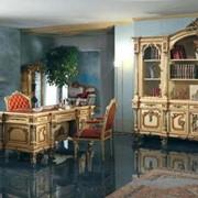 Мебель для домашнего кабинета Silik Giove фото