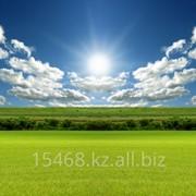 Земельный участок сельхозназначения до 10 га фото