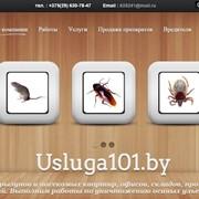 Уничтожение насекомых и грызцнов фото