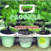 Подкормка для растений рассада Ортон фото