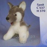 Мягкая игрушка Волк Грей С537 фото