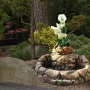 Каскад-цветок фото