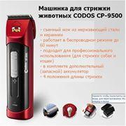 фото предложения ID 824385