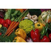 Продажа овощей фото