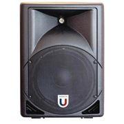 Акустическая активная система Magnetto Audio Works PA-210 (10 дюймов) фото