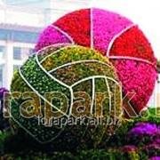 Каркас топиарной фигуры Мяч фото