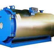 Промышленные стальные водогрейные котлы Buderus Logano S825/S825LN фото