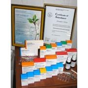 Антигомотоксическая терапия фото