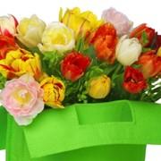 """Тюльпаны зимой по оптовым ценам! Только от компании """"Solo-Flowers""""!!!! фото"""