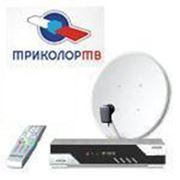 Триколор ТВ-Сибирь фото
