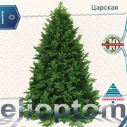 Ель Царская 185 см. зеленая Триумф фото