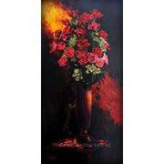 Розы в свете фото